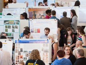 Student Research and Creativity Celebration Releases Online Schedule and Program