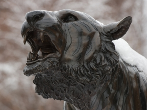 A Look Ahead: This Week at Buffalo State