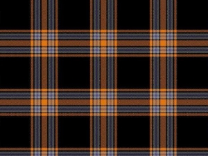 Graduate's Winning Design Now Official Buffalo State Plaid