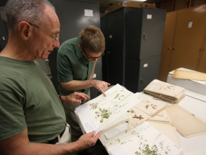 Eckert Herbarium Showcases Extensive Plant Specimen Collection