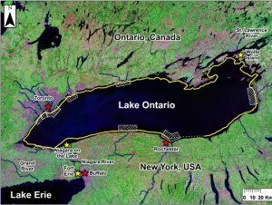 Results of Binational Study Warn of Threats Posed by Invasive Mussels, Fish in Lake Ontario