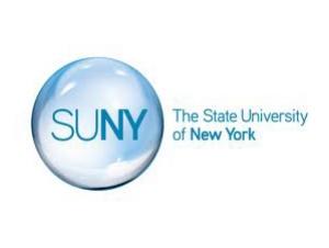 SUNY Awards Buffalo State Four Innovative Instruction Technology Grants