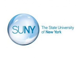 CIS Student Named SUNY Student Fellow