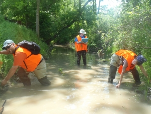 Down by the River: Students Collect Data from Local Streams