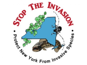 WNY PRISM Plans Invasive Species Awareness Week Activities